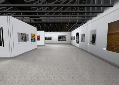 The 2009 Sunshine Coast Art Prize (Caloundra Regional Art Gallery)